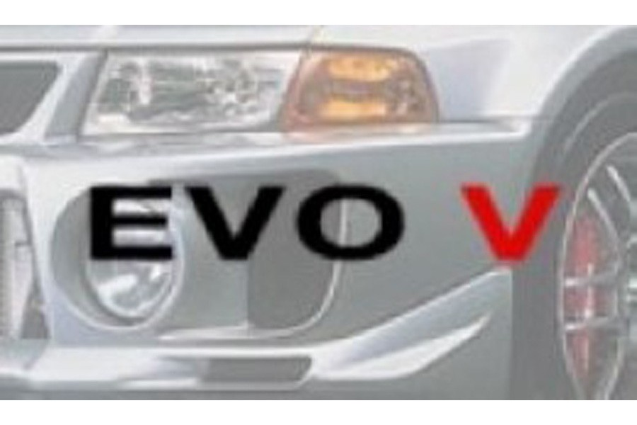 EVO V